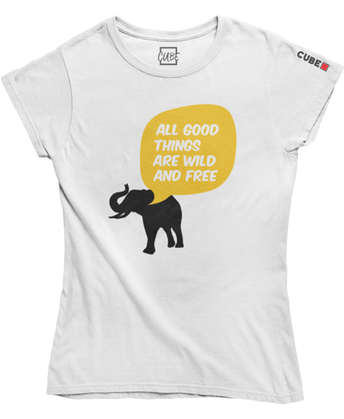 "T-shirt ""All good things"""